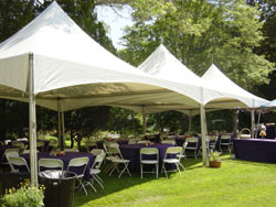 20 ft x 20 ft tent